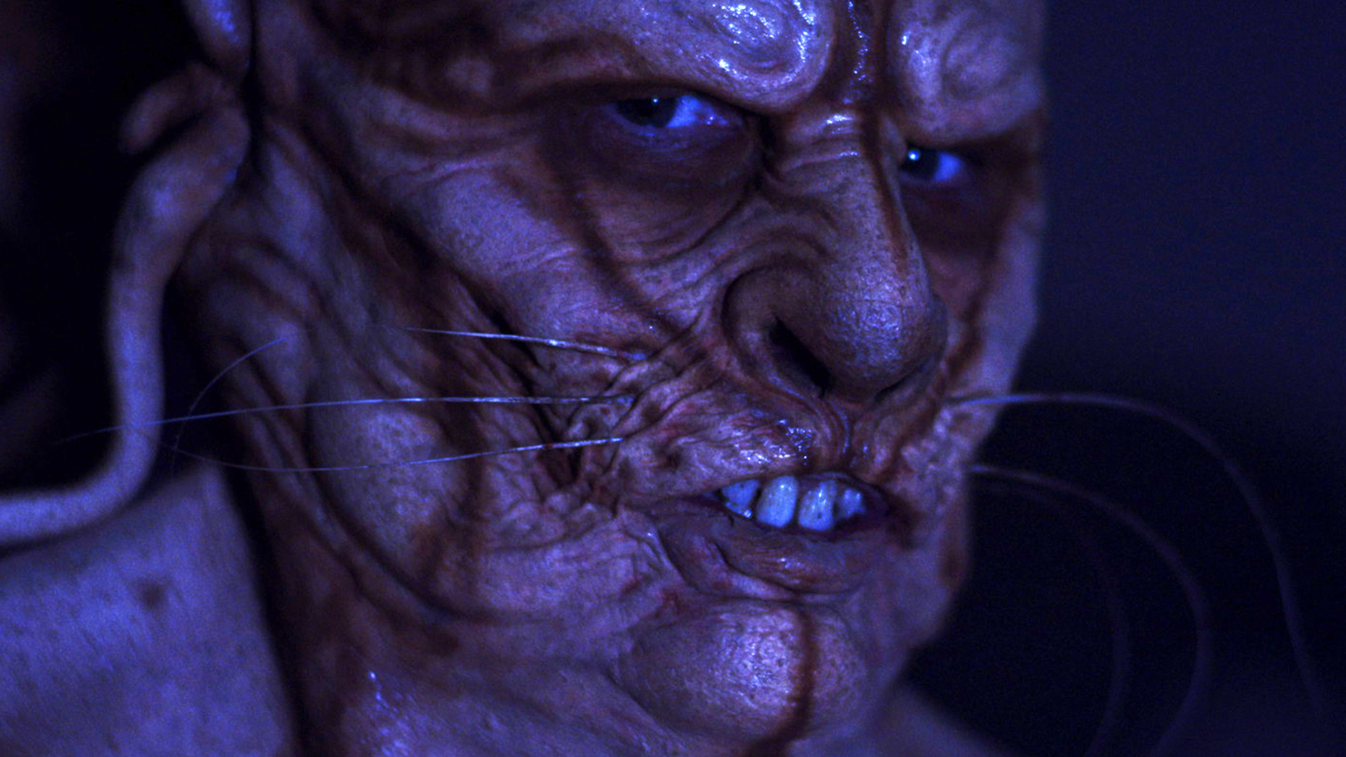 rottentail11