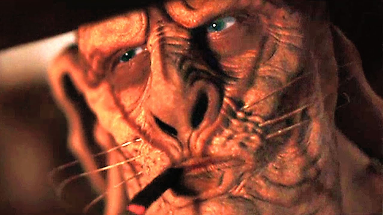 rottentail8